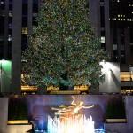 Uponáhľaný vianočný New York - Alain Delon